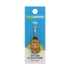 Our Lady of Vailankanni Charm