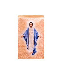 Blessed Mother Printed Tapestry - Small - Artist, John Nava