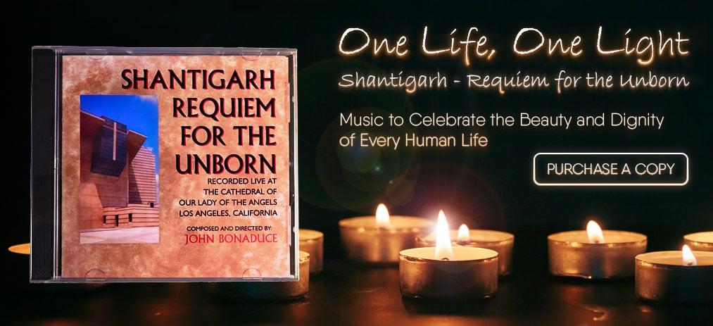 Shantigarh Requiem For The Unborn
